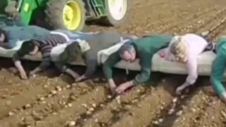 面朝黄土背朝天,你们想要躺着的工作吗?轻松又自在