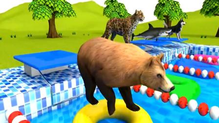 大猩猩给各种朋友准备好了游泳圈 动物世界