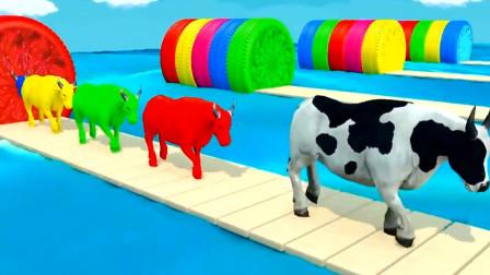 各种动物走进魔法房间变出各种彩虹动物 动物世界