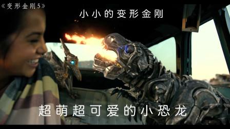 科幻电影,有史以来最可爱的变形金刚小恐龙,超萌超可爱,笑翻天