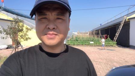 刘小二免费领了一块40多平的菜园子 在市内也有园子可以种菜了