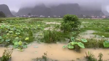 广西桂林暴雨来势凶猛,洪水来得太快了,真是罕见
