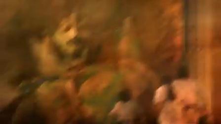 赛罗奥特曼 THE MOVIE 超决战!贝利亚银河帝国     普通话666