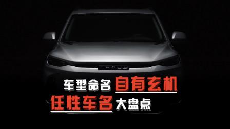 车如其名?这几款新能源车型的名字,真的很有深意