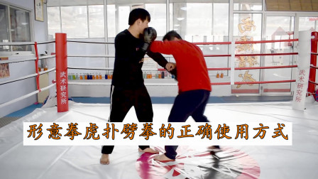 看似无用?庞超老师教你形意拳虎扑,横向劈拳的正确使用方式