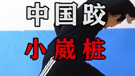 中国跤崴桩的秘密:刘清海老师教你学习小崴桩