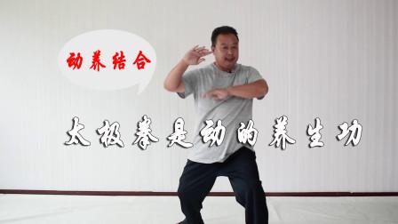 今日必看:太极拳是动的养生功,动养结合,阴阳相济