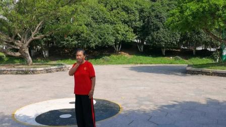 郑春芬于2020-7.16曰在龙港公园示范42式太极拳。