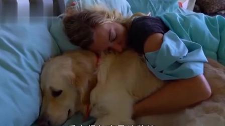 狗狗被关家里却意外怀孕,主人非常纳闷,看完监控后崩溃大哭