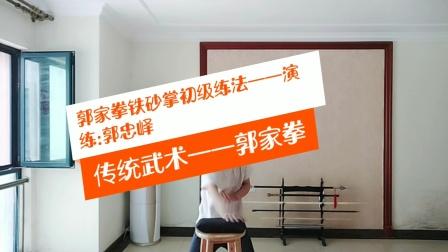 传统武术郭家拳——郭家拳铁砂掌初级练法——演练:郭忠峄