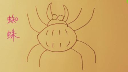 儿童学画简笔画-蜘蛛,教宝宝学画画入门教学,小孩学绘画基础,小朋友学美术启蒙【乐成宝贝】