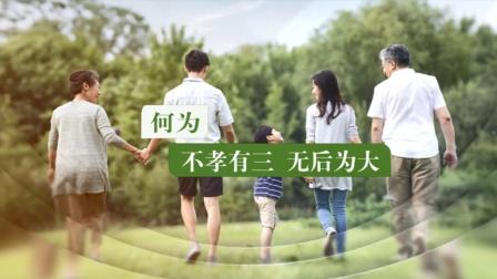 新解不孝有三,无后为大_LD20200519