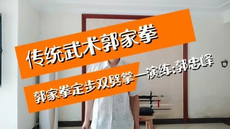 传统武术郭家拳——郭家拳定步双劈掌——演练:郭忠峄