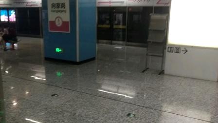 [2020.7]重庆轨道交通6号线 向家岗-龙凤溪 运行与报站