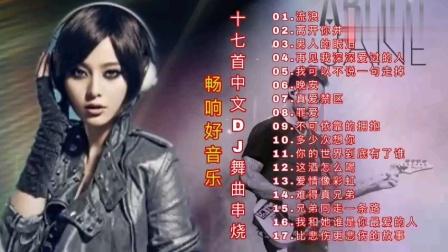 中文DJ舞曲串烧,车载DJ音乐嗨曲,劲爆串烧