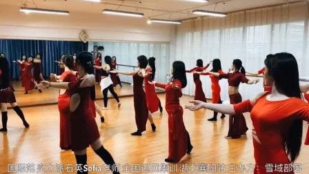 国际范 实力派石英Sofia老师 全国巡回集训湖北襄阳站 主办方:雪域部落