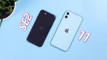 iPhone SE2 vs iPhone 11速度对比:看完就知道该选谁啦!