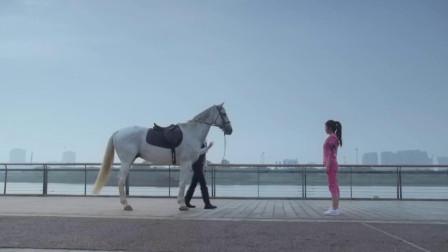 胡歌骑着白马,向茅小春表白,太浪漫了
