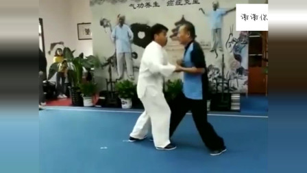 太极拳高手展示太极推手八法,轻松打飞对手!