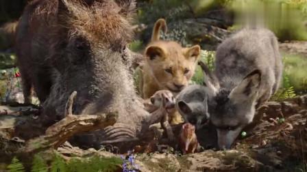 一头野猪和松鼠救了小狮子,长大后成为森林之王!