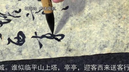 知道书画|海峰书法视频 苏轼词《南乡子·送述古》01