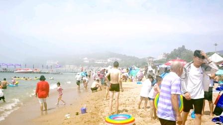 大暑时节海浴正当季傅家庄浴场浪大海鸥多