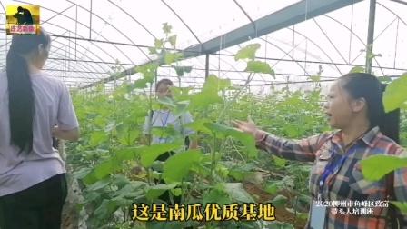 2020柳州市鱼峰区致富带头人培训班实地观摩晋航农业生态园基地实践!