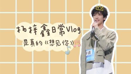 杨梓鑫日常Vlog:一首《想见你》送给你