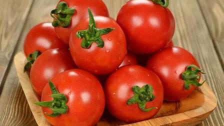买西红柿时,看准这个部位,催熟西红柿一眼辨别,提醒家人要留意