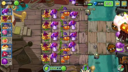 植物大战僵尸2:魔术三兄弟,变身神器,把僵尸全部变成植物