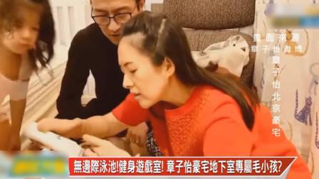 名嘴聊章子怡北京2亿豪宅:根本是给保姆和宠物住的