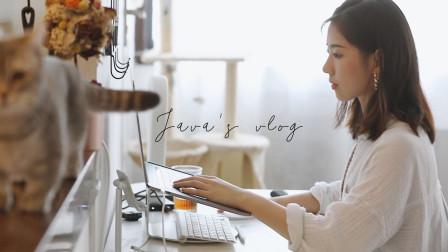 VLOG 我被采访了 在家如何制作瑜伽视频 瑜伽老师和她猫猫狗狗的小日子分享