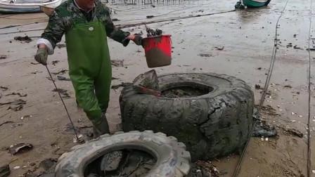 赶海发现巨大废弃轮胎,里面成了大螃蟹的老窝