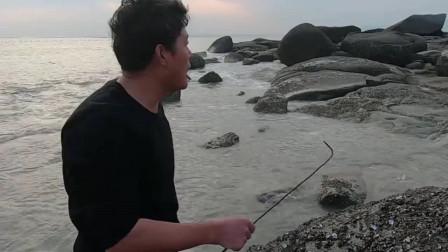 海边流浪网挂着值钱货,连大龙虾都随便送