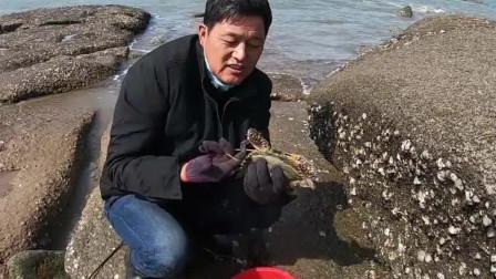 海边养殖场发现大洞,值钱海货往外跑,捡漏直接发财了