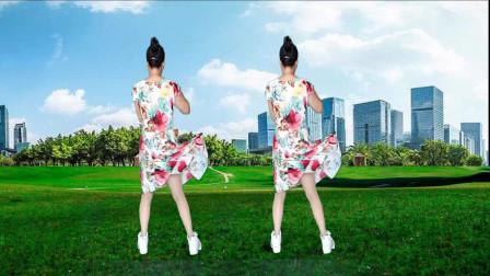 芷水广场舞《大叔》DJ版背面全网都在跳你学了吗