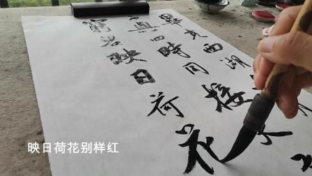 书法作品欣赏杨万里诗:晓出净慈寺送林子方