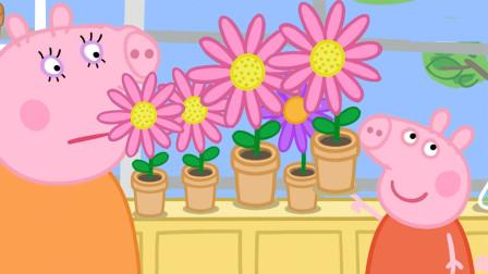 小猪佩奇最新第八季 和猪妈妈一起种了很多漂亮的花朵