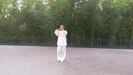 杨福根四十二式太极拳练习