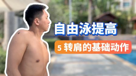 【自由泳提高】5.转肩的基本动作|梦觉教游泳