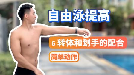 【自由泳提高】6.转体和划手的配合:简单的动作|梦觉教游泳