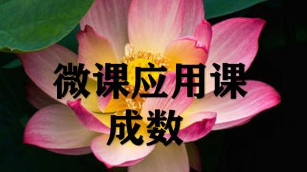微课应用课_成数