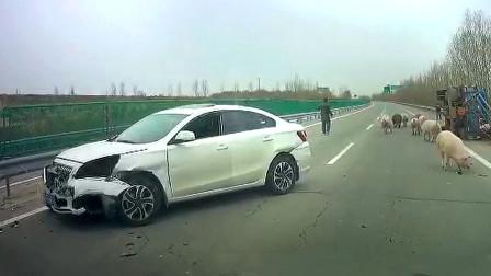 交通事故合集:出租车占道超车,车速太快瞬间失控