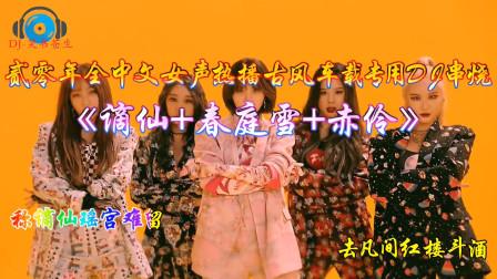 贰零年全中文女声热播古风《谪仙+春庭雪+赤伶》车载专用DJ串烧·DJ笑书苍生