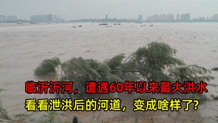 实拍:临沂小埠东橡胶坝泄洪场面,看看泄洪后的河道变成啥样了?