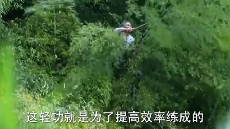 """浙江60岁高人身怀绝技,能在竹林上随意游走,人称""""竹海飞人"""""""