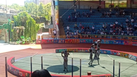 上海野生动物园百兽表演(一)