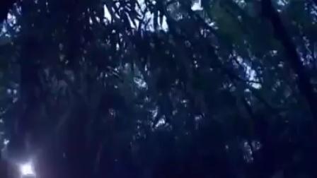 phim nyub vais2