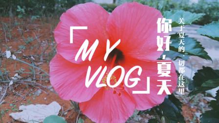 音乐视频010-漂亮的花儿 自然美景 纯音乐 dj歌曲 网络红歌 乡村美景