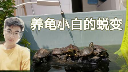 当龟坑小白养龟两年之后会变成什么样?